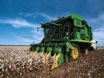 Guided Cotton Farm Tour (seasonal)