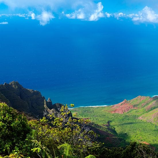 New ALHI Member Hotels on Kauai and the Big Island