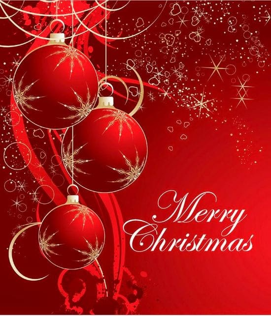 Merry Christmas from TDA