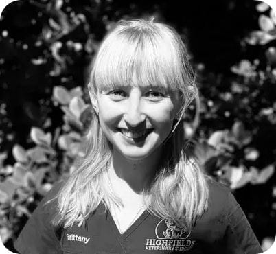 Brittany Berthelsen, Vet Nurse & Customer Care at Highfields Vet Surgery in Toowoomba