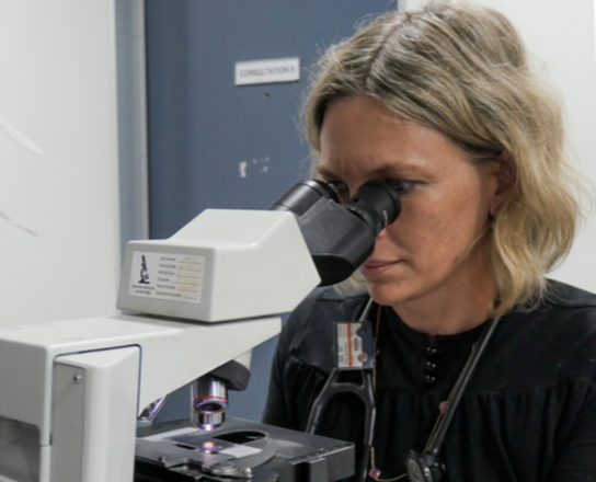 Laboratory testing at Cat Specialist Services
