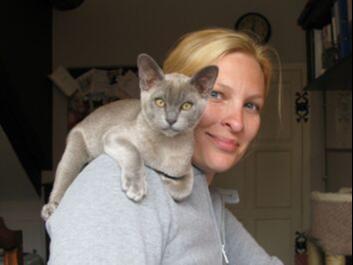 Rachel Korman, Feline Internal Medicine Specialist