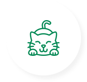 Feline presentations at the 2021 VSS Conference