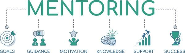 Business Mentors Network Mentoring Process