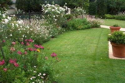 Cottage Garden Ideas Australia Cottage Garden Ideas Australia E