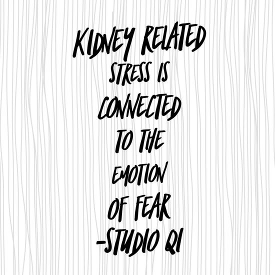 Stress: fear & the kidneys
