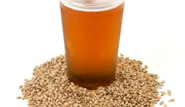 Brewing Enzymes