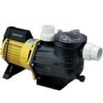 Pool Pumps/equipment