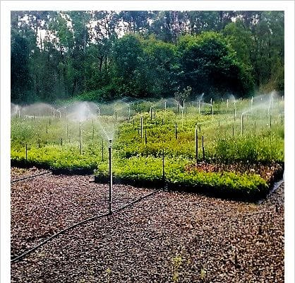 Brisbane Irrigation Supplies | Total Water Services