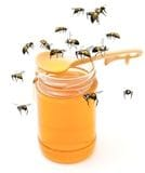 Bees to Honeypot
