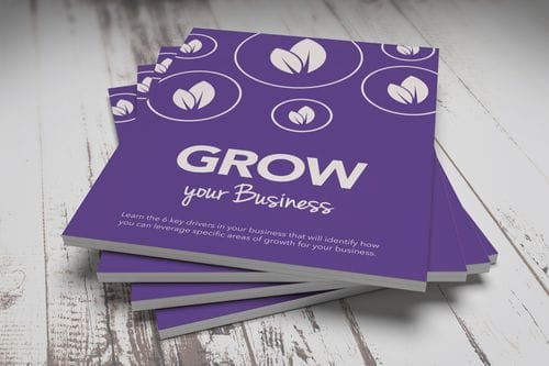 Grow Your Business Workbook