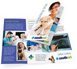 6 Page DL Brochure