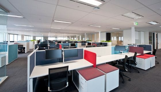 Hall Chadwick, Sydney