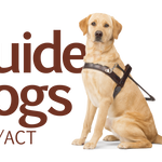 Guide Dogs NSW Day Tour