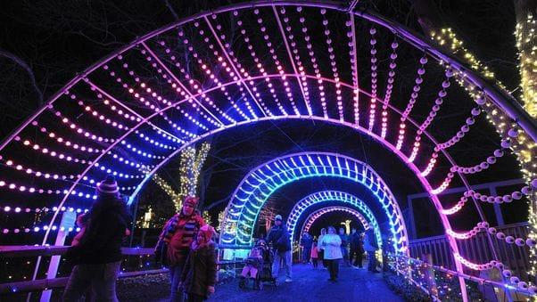 5b3ab8c0a2dc0 - Christmas Lights Spectacular Part 2 Hunter Valley Gardens 30 December
