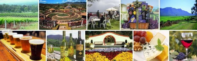 Connect Coaches Hunter Valley Wine Tasting Tours
