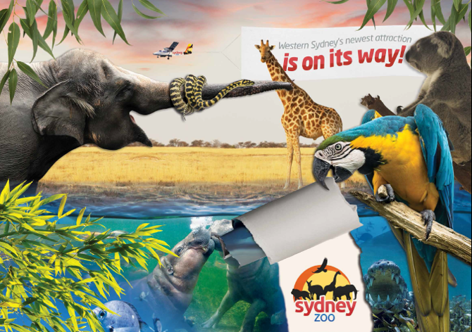 Connect Coaches Sydney Zoo Day Tours