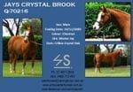 JAYS CRYSTAL BROOK - SOLD