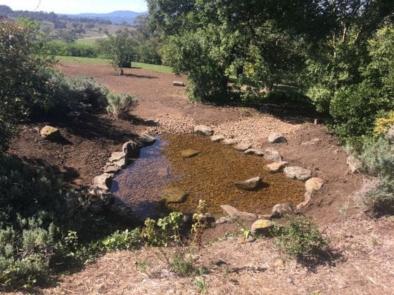 Natural pond construction