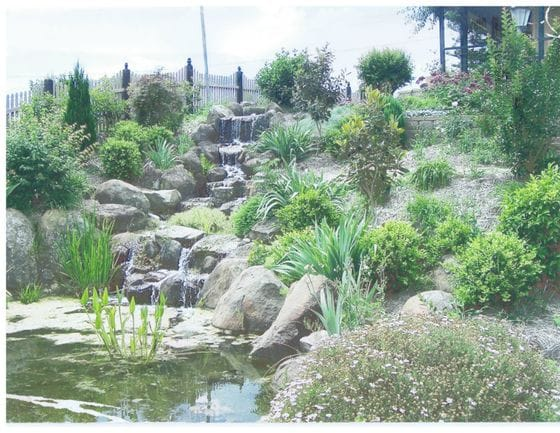 Water feature and ponds