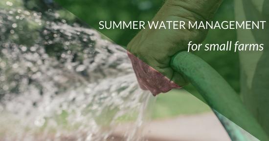 Summer Water Management