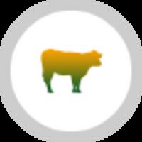 Animal & Livestock Care