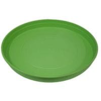 Bainbridge Feeding Tray