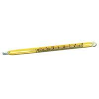 Bainbridge Veterinary Thermometer