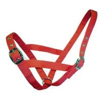 Bainbridge Cattle Halter Webbing