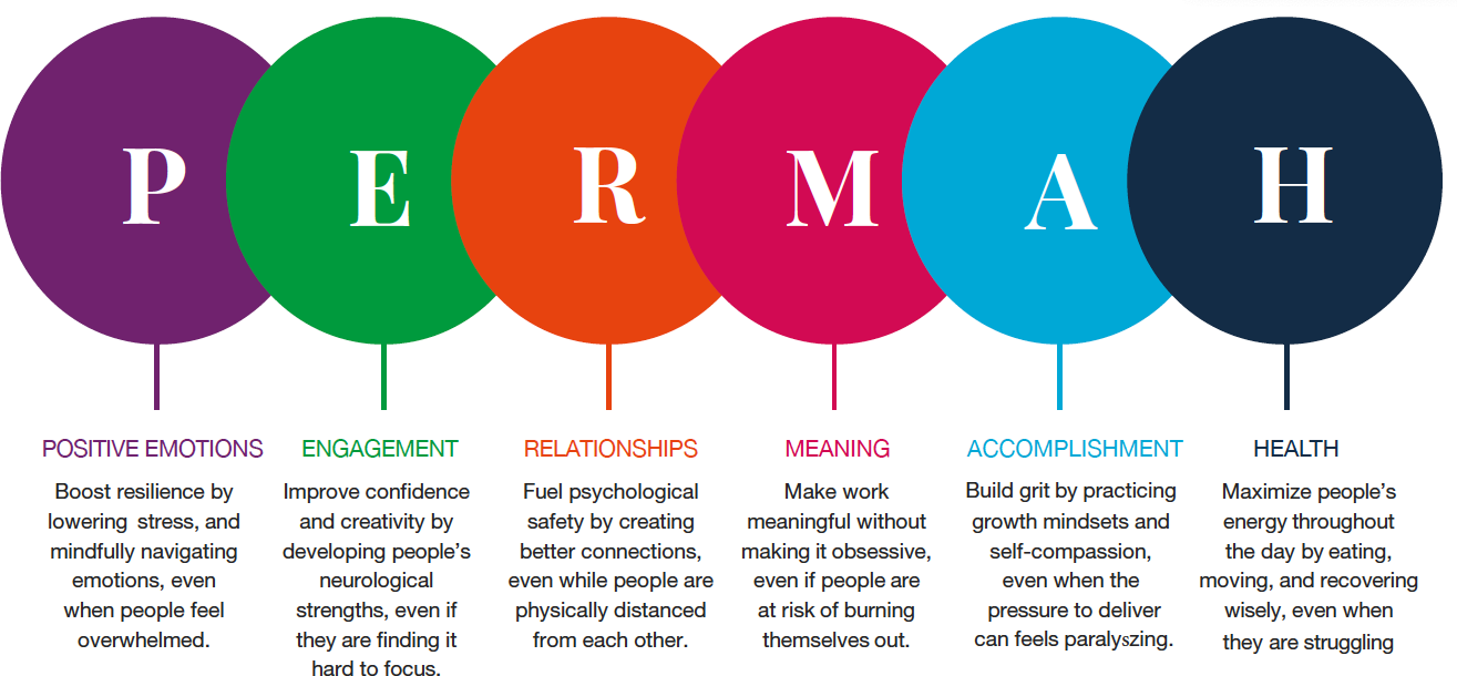 PERMAH Workplace Wellbeing and Talent Wellbeing at Talent Toold