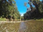 Booluomba Ck Area1, Conondale NP, North of Brisbane
