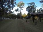 Cedar Grove, Amamoor SF, North of Brisbane
