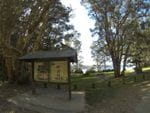 Neranie Head, Myall Lakes Nat Park, Forster Region