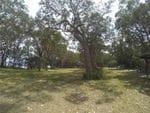 White Tree Bay, Myall Lake Nat Park, North of Hawks Nest