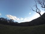 The Diggings, Turon River Nat Park, Lithgow Region