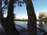 Richardsons Bend, Murray River, Barnawartha North