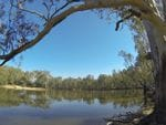 Grauthams Bend, Murray River, North of Rutherglen
