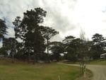 Chapel Sound Foreshore Reserve, Mornington Peninsula