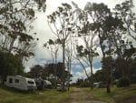 Rosebud Foreshore Reserve, Mornington Peninsula