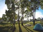 Guthalungra Rest Area, Guthalungra, Bruce Hwy