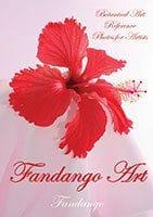 Fandango Art by Fandango