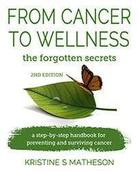 From Cancer to Wellness by Kristine S Matheson