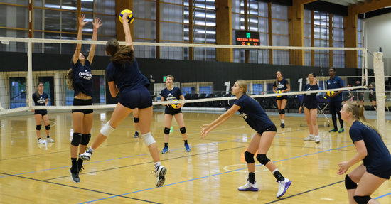Local Search On for Future Olympic Volleyroos