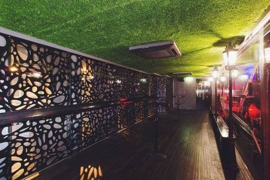 Artificial Grass Ceiling