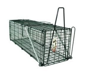 Possum Trap