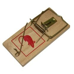 Mouse Snap Traps - 2 pack