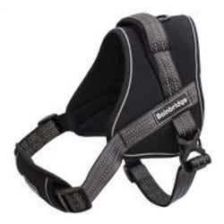 Small Dog Harness Padded - Adjustable