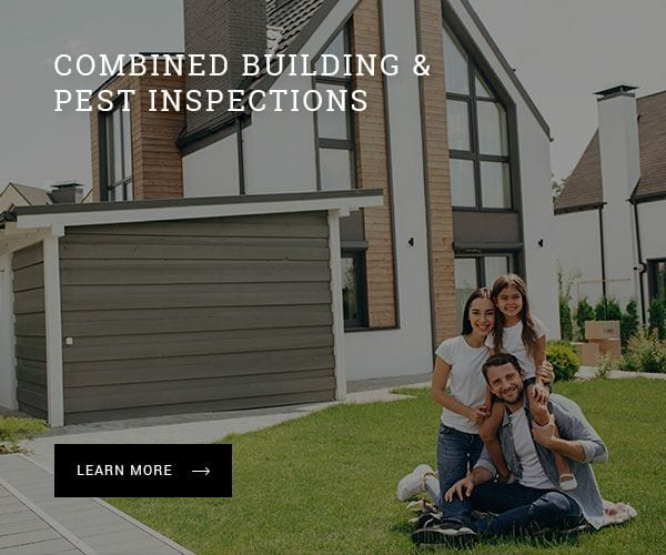 Combined building and pest inspections in Port Macquarie