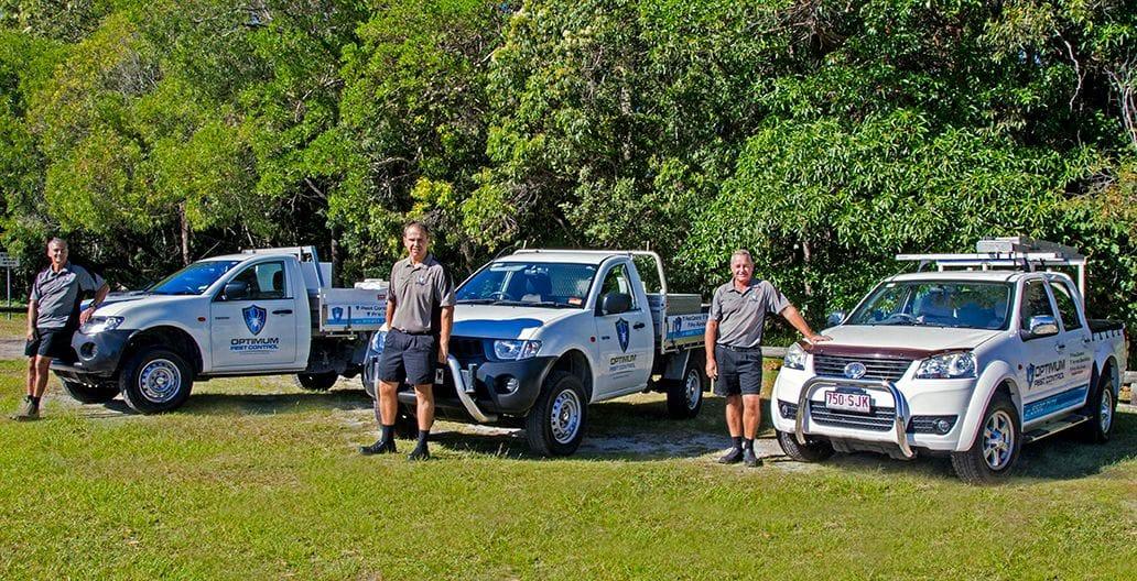 Licensed Pest Control Gold Coast