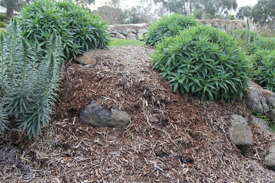 Quality Garden Mulch - $10 per m3*